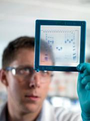 Electrophoresis gel being studied by a researcher