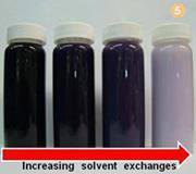 Figure 5 -Photograph demonstrating the effect of solvent exchanging on the expansion of PVA