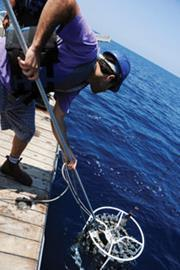 Oceanography research, measuring plankton produciton