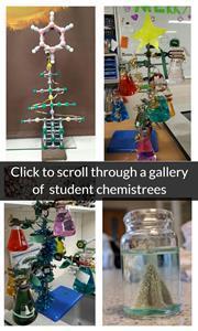 Student chemistrees