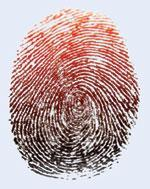 The fingerprint changes colour from black to red, showing where the cocaine has been smeared