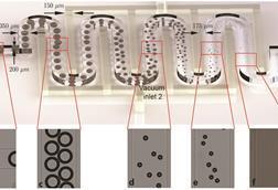 Micro-microbubbles