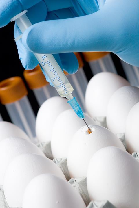 An image showing an egg being injected as part of the bird flu vaccine production