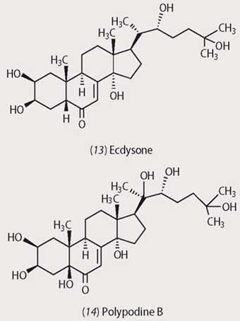 Structures of Ecdysone and Polypodine B