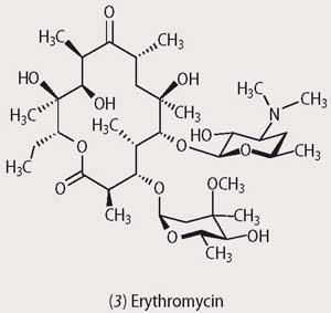 Structure of Erythromycin