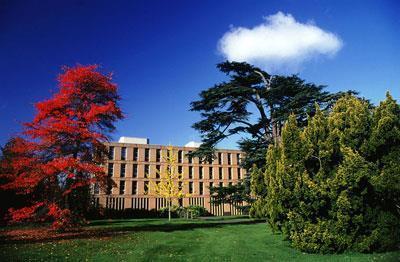 Reading University