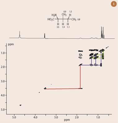 Figure 1 - The 1H-1H COSY spectrum of the amonio acid isoleucine