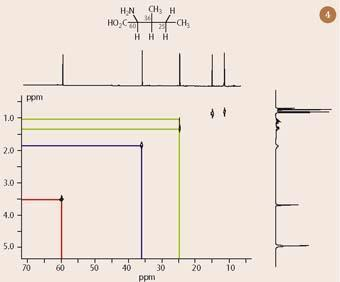 Figure 4 - 13C-1H COSY spectrum of isoleucine with one dimensional 13C- and 1H-nmr spectra superimposed on horizontal and vertical axes respectively