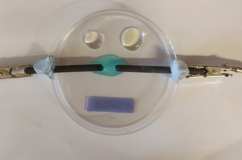 Microscale electrolysis of copper chloride in petri dish