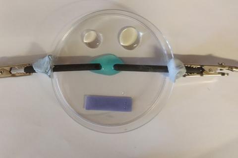 Microscale electrolysis of copper chloride in petri dish