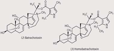 Structures of (2) batrachotoxin and (3) Homobatrachotoxin