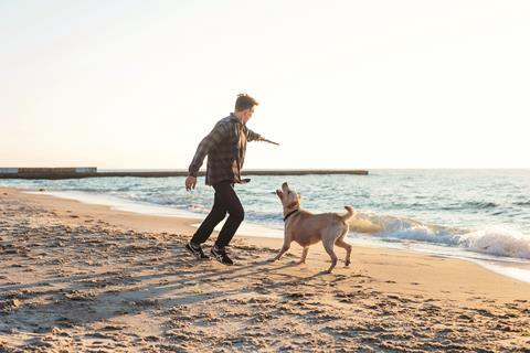 An image showing a man playing catch with his dog at the beach