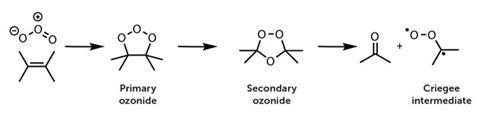 Ozone reacts with alkenes to produce a carbonyl and a biradical carbonyl oxide, known as a Criegee intermediate