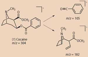(1) cocaine m/z 304, split into m/z = 105 and m/z =182