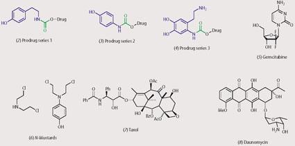 Structures of (2)-(8): prodrug series 1 (2), prodrug series 2 (3), prodrug series 3 (4), gemcitabine (5), N-mustards (6), taxol (7) and daunomycin (8).