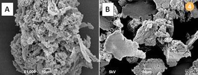 Figure 4 - SEM images of (a) virgin expanded PVA (10 μm) and (b) expanded PVA from waste LCD (10 μm)
