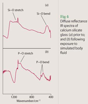 Figure 4 - diffuse reflectance IR spectra of calcium silicate glass: (a) prior to and (b) following exposure to simulated body flui