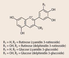 Rutinose and Glucose structures