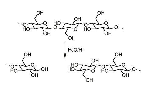 Chemical structures showing the acid catalysed hydrolysis of cellulose chains