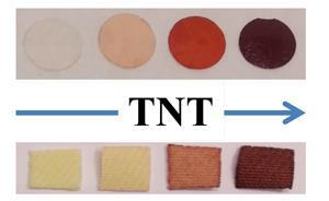 Polymer changing colour in presence of TNT