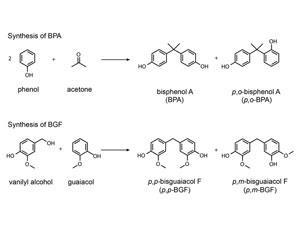 Reaction scheme for the synthesis of BPA and BGF