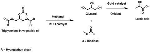 Converting glycerol into lactic acid