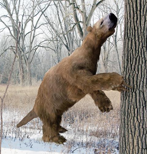 A giant sloth