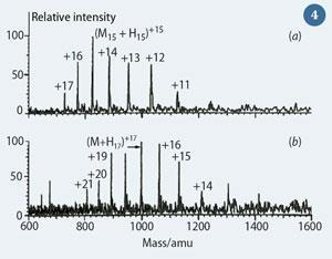Figure 4 - ESI mass spectra of (a) cytochrome C; and (b) myoglobin.