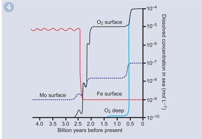 Figure 4 - Estimated aqueous concentrations of iron (red), molybdenum (blue) and oxygen (black) in seawater over the last 4 billion years of the Earth's history