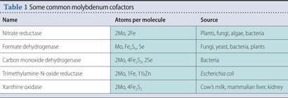 Table 1 - Some common molybdenum cofactors
