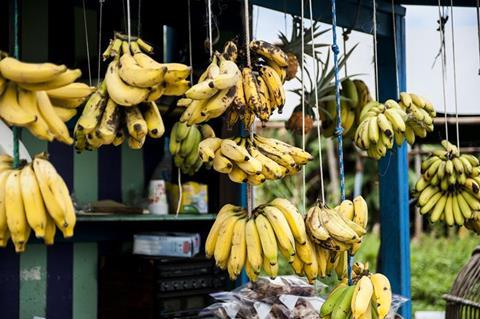 Bananas hanging on string in a shop