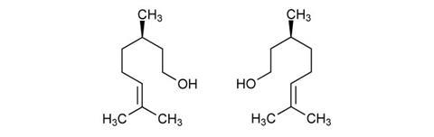 0416EiCMagMolCitronellolstructures630m