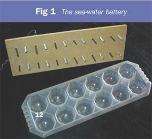 Figure 1 - the sea-water battery