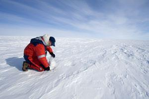 A scientist investigating an ice core